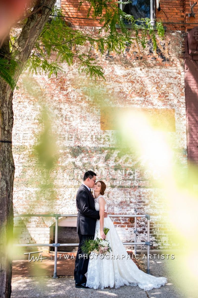 Chicago-Wedding-Photographer-TWA-Photographic-Artists-Private-Residence_Franz_Su_ZZ-0218