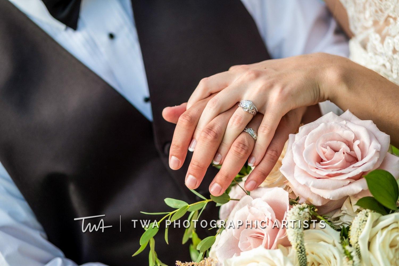 Chicago-Wedding-Photographer-TWA-Photographic-Artists-Private-Residence_Franz_Su_ZZ-0432