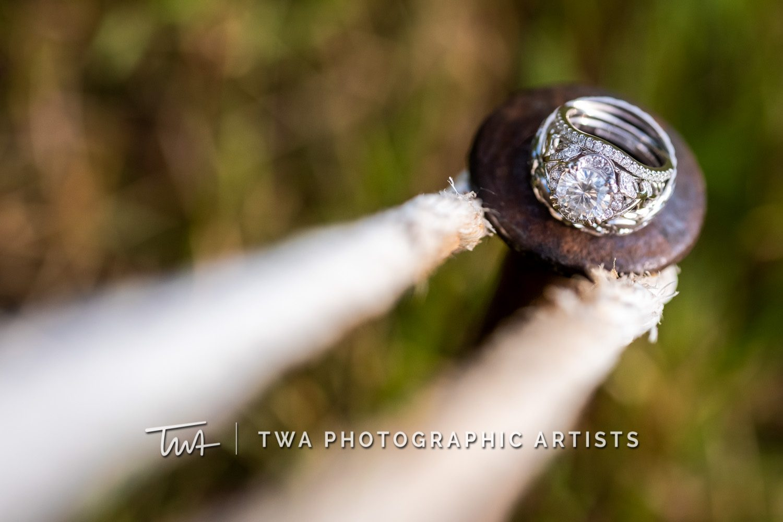 Chicago-Wedding-Photographer-TWA-Photographic-Artists-Private-Residence_Franz_Su_ZZ-0459