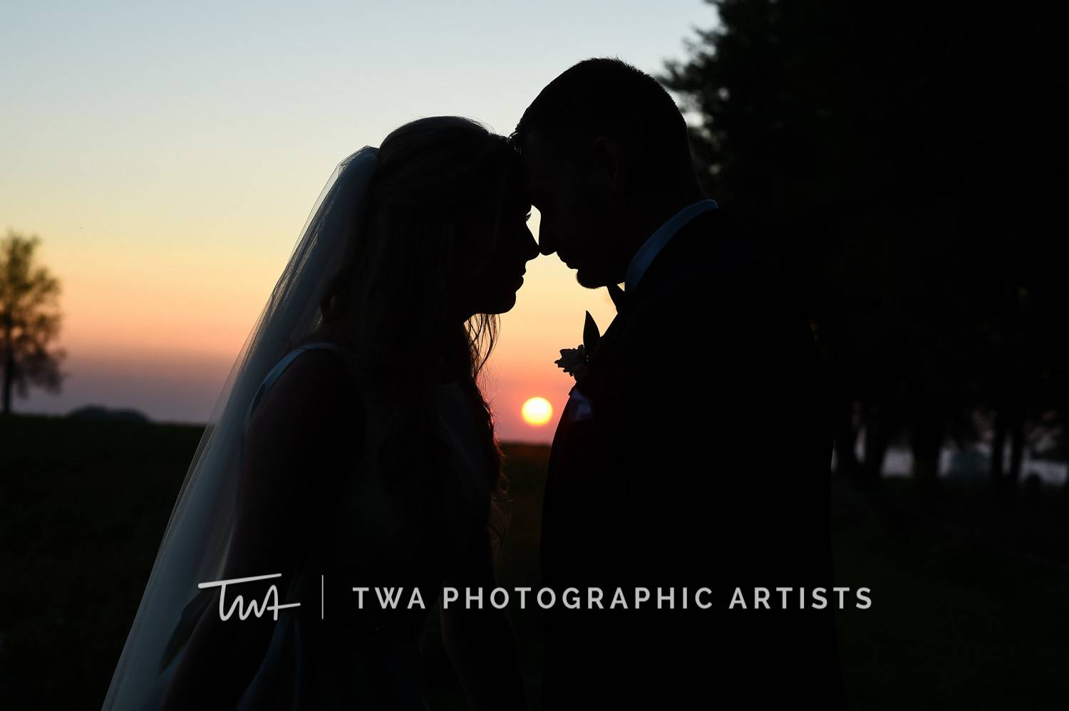 Chicago-Wedding-Photographer-TWA-Photographic-Artists-Private-Residence_Howes_Koczmara_SR_TL-0820
