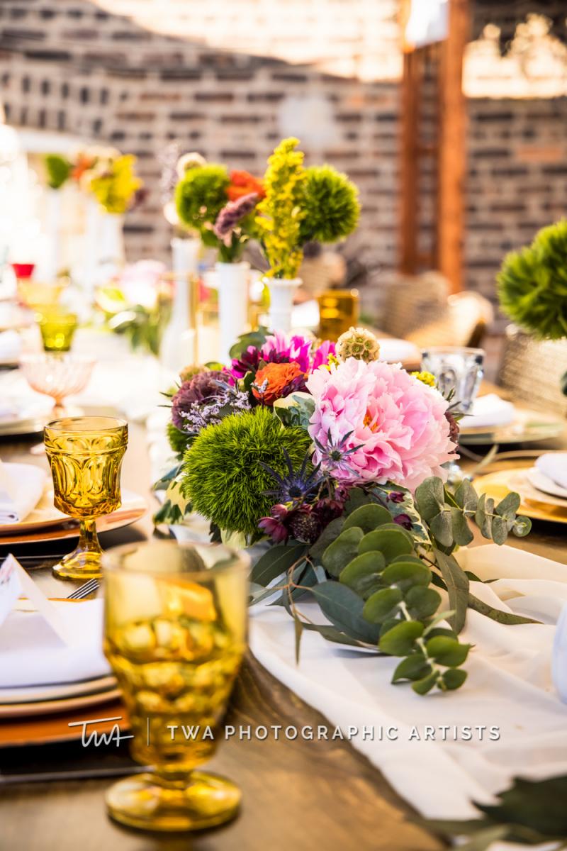 Chicago-Wedding-Photographer-TWA-Photographic-Artists-Private-Residence_McNamara_Patrick_AA-072_0523