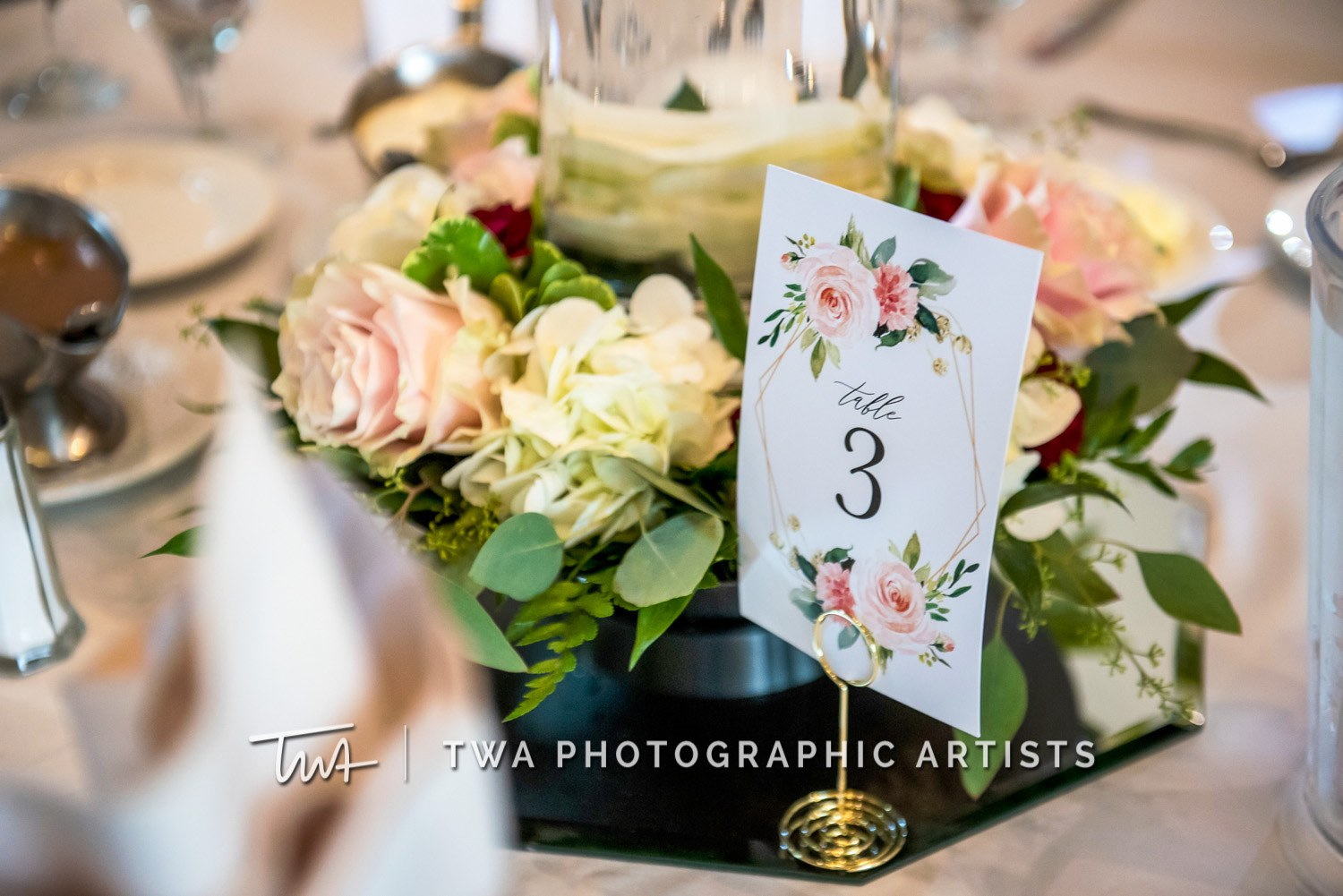 Chicago-Wedding-Photographer-TWA-Photographic-Artists-White-Pines-Banquets_Petersen_Sherman_ZZ_DL-059_0575