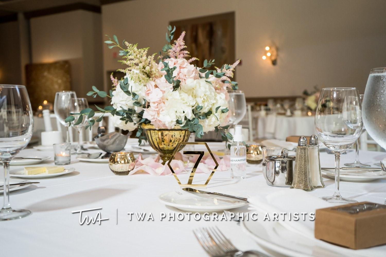Chicago-Wedding-Photographer-TWA-Photographic-Artists-Belvedere-Banquets_Lee_Kim_JA_DO-060_1481