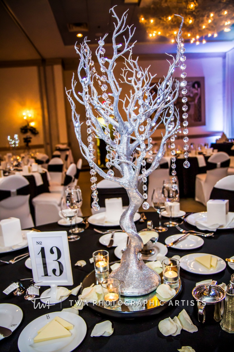 Chicago-Wedding-Photographer-TWA-Photographic-Artists-Belvedere-Banquets_Bentley_Garrido_MB_JA-0650