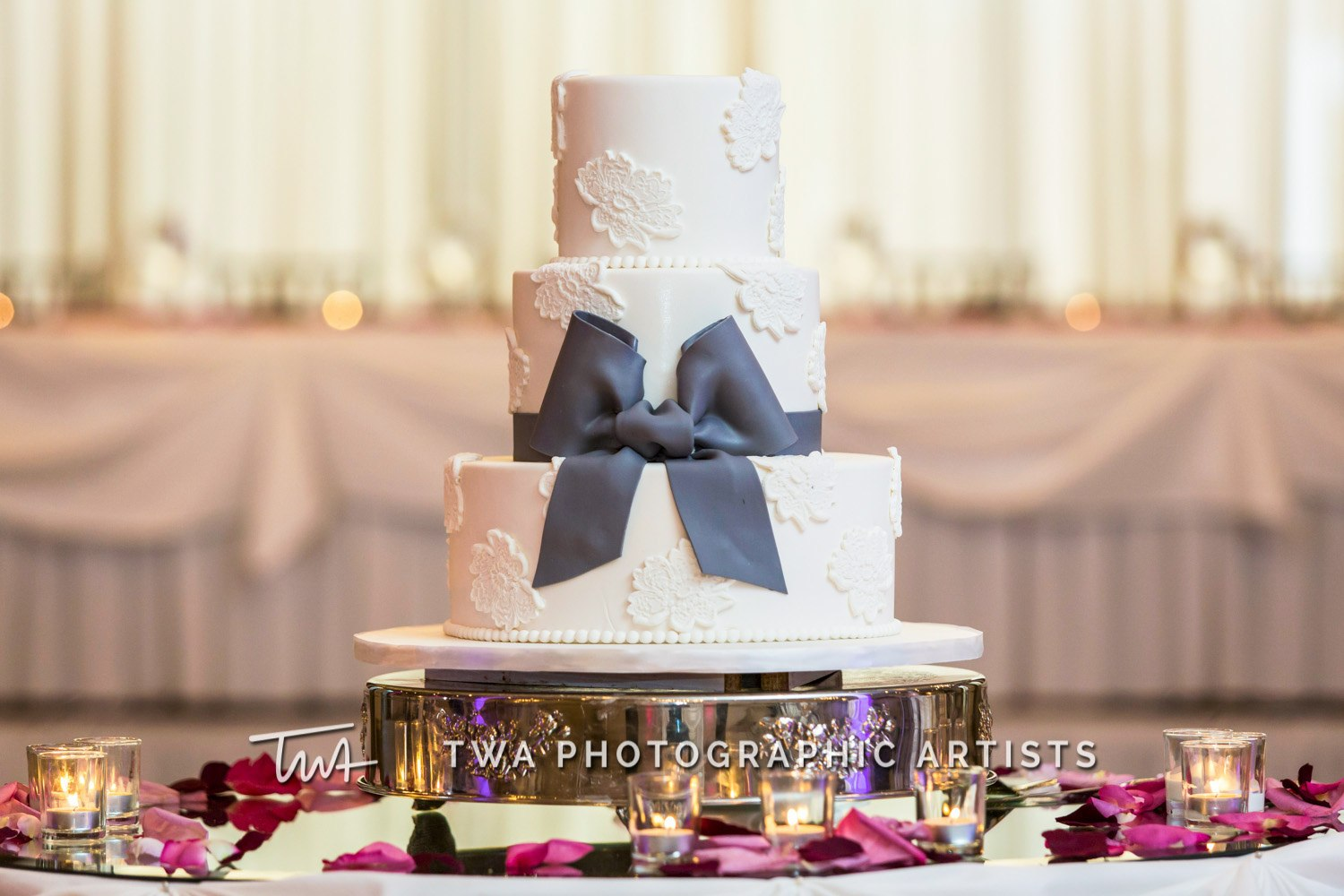 Chicago-Wedding-Photographer-TWA-Photographic-Artists-Belvedere-Banquets_Galway_Galway_MiC_DR-0988