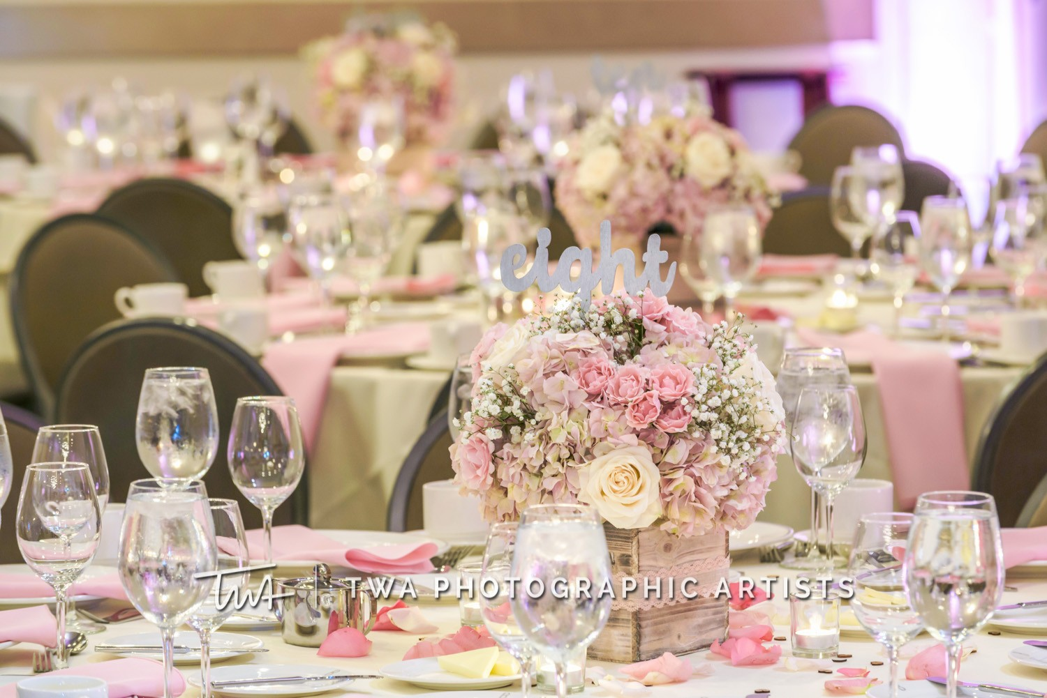 Chicago-Wedding-Photographer-TWA-Photographic-Artists-Belvedere-Banquets_Smith_Meyer_JP_GP-0538