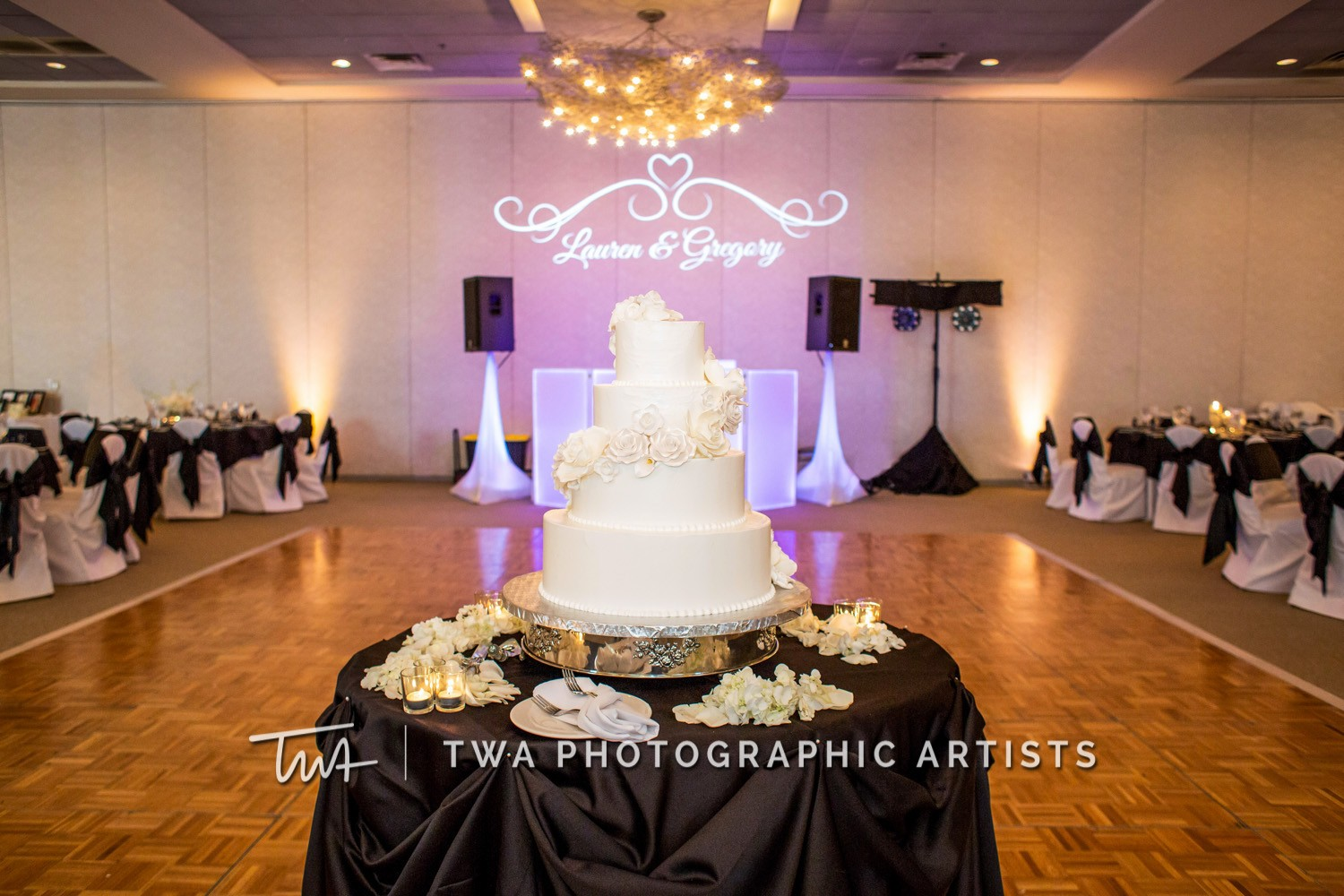 Chicago-Wedding-Photographer-TWA-Photographic-Artists-Belvedere-Banquets_Straka_Zinn_MJ_DH-0379-Edit