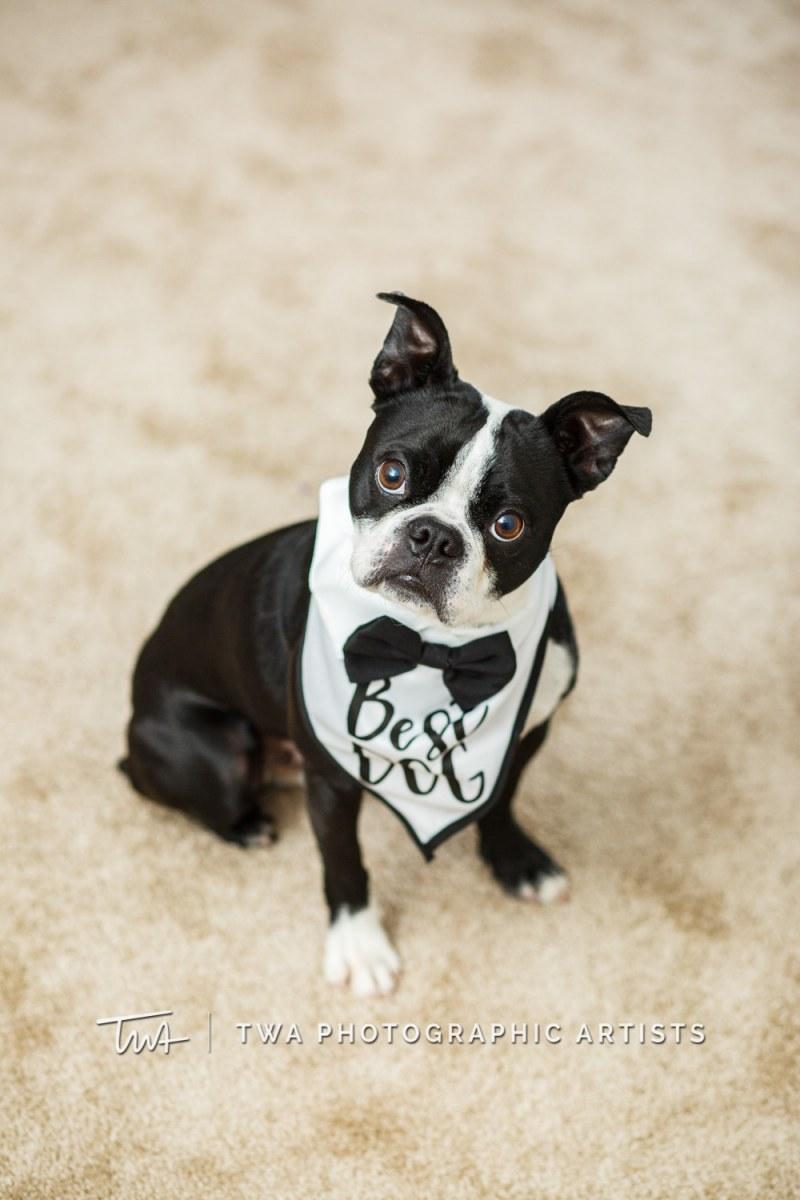 Chicago-Wedding-Photographer-TWA-Photographic-Artists-Bohne_Maldonado_MJ-0104