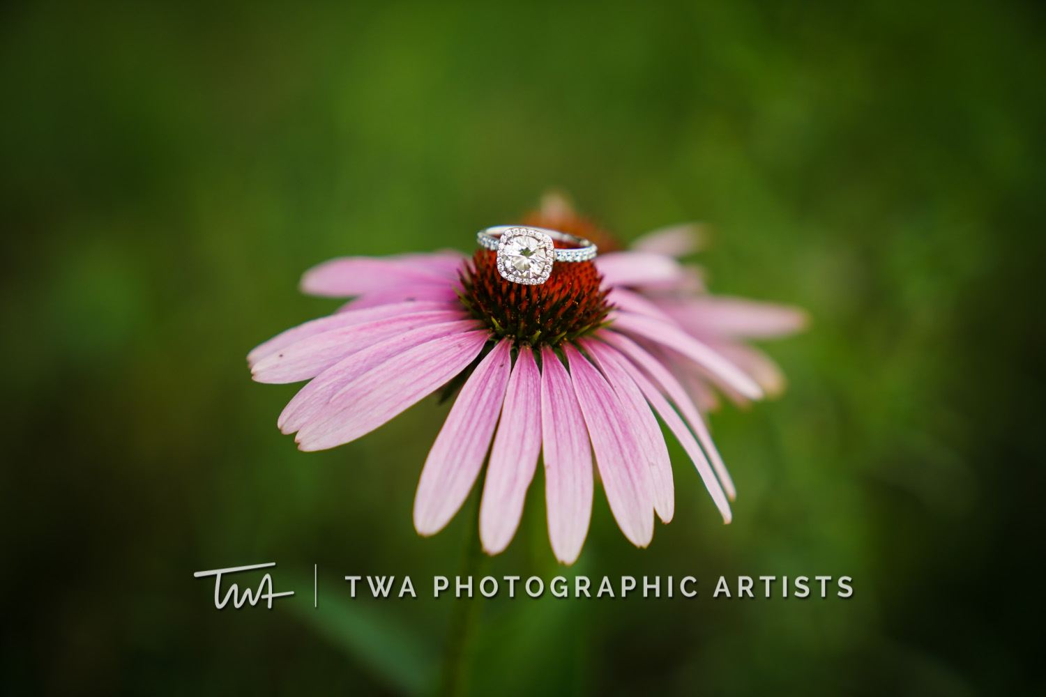 Chicago-Wedding-Photographer-TWA-Photographic-Artists-Riverview-Farmstead_Gacek_Thimmig_JC-059