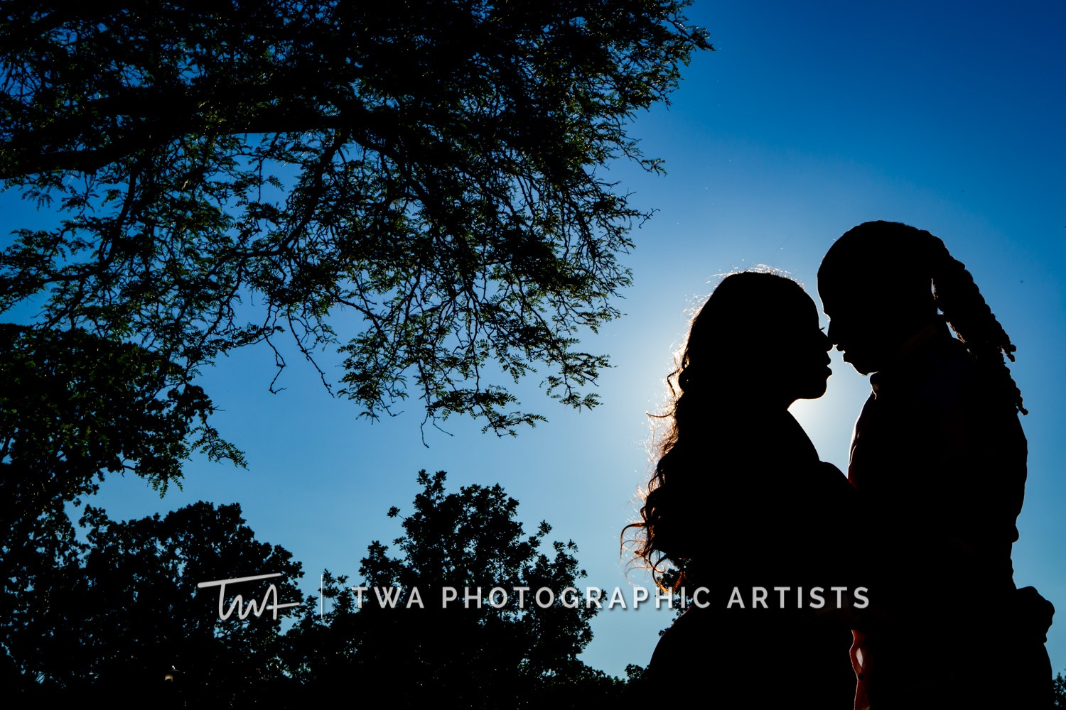 Chicago-Wedding-Photographer-TWA-Photographic-Artists-Dominican-University_Stephen_Foster_HM-087