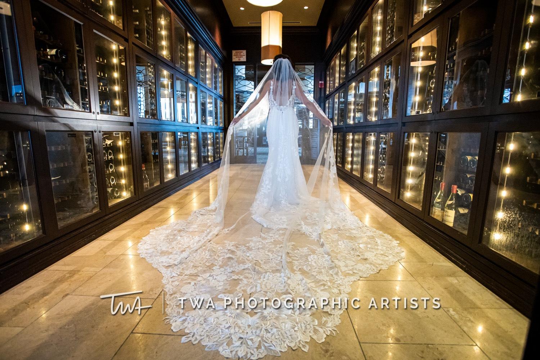 Chicago-Wedding-Photographer-TWA-Photographic-Artists-Mid-America-Club_Fabian_Garcia_MiC_DO-0660