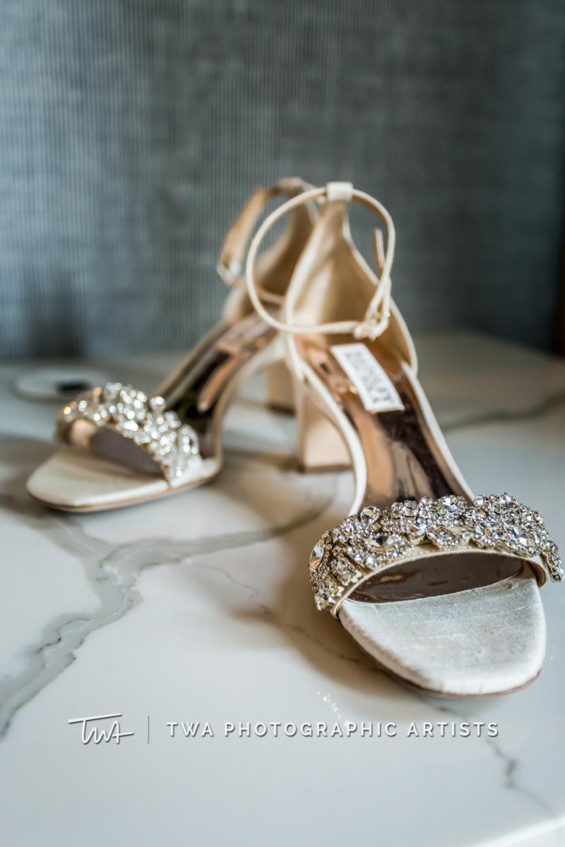 Chicago-Wedding-Photographer-TWA-Photographic-Artists-Private-Residence_Garcia_Sierra_SG-0002