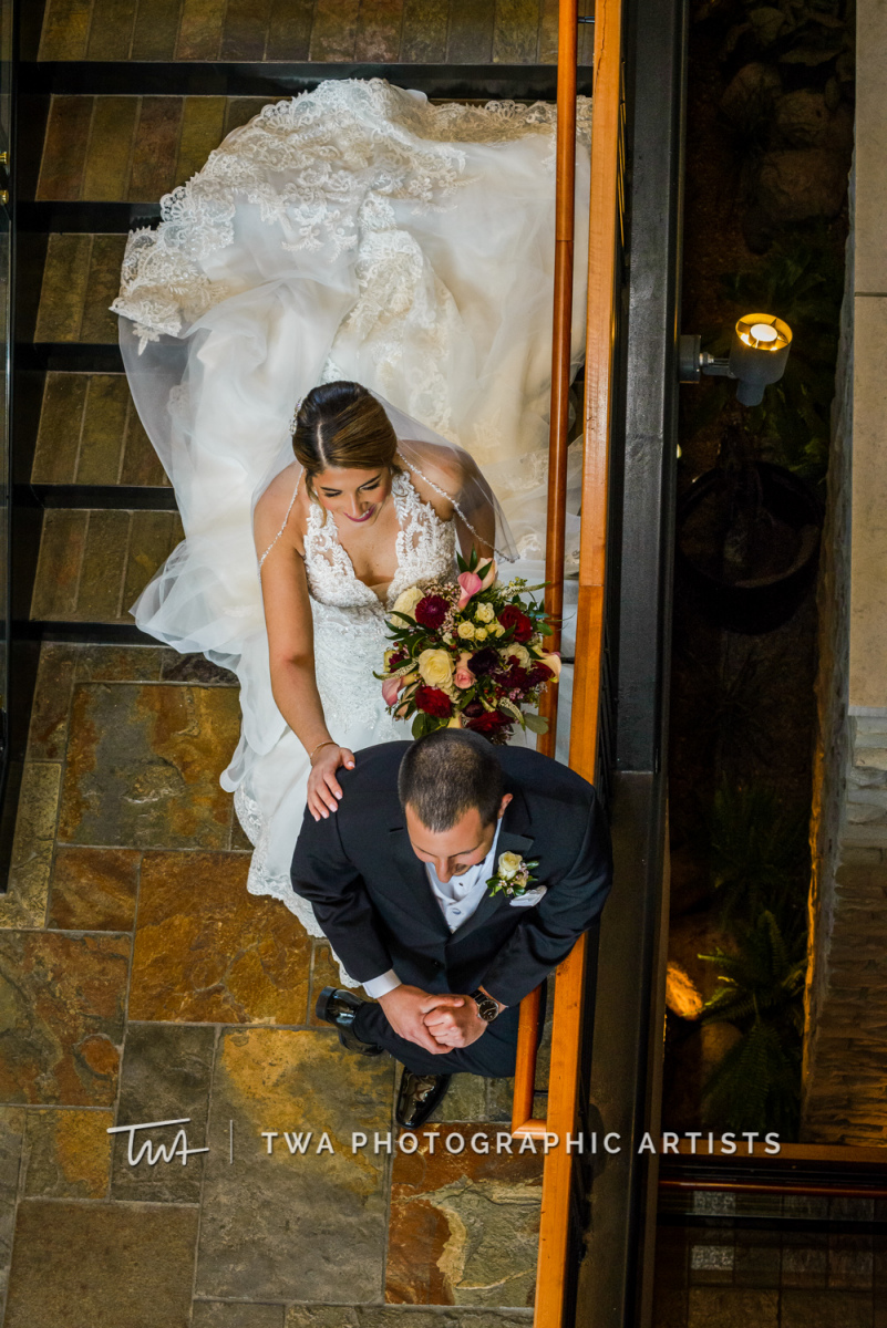 Chicago-Wedding-Photographer-TWA-Photographic-Artists-Venutis_Faleni_Flora_MiC_TL-005-1404