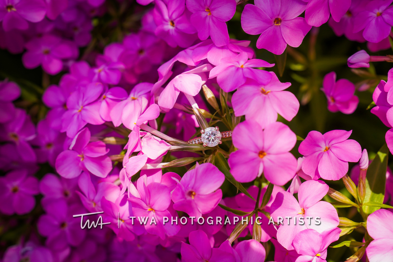 Chicago-Wedding-Photographer-TWA-Photographic-Artists-Naperville-Riverwalk_Van-Dellen_Fox_JC-068