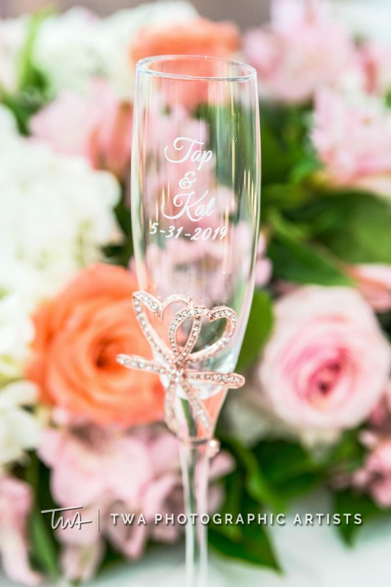Chicago-Wedding-Photographer-TWA-Photographic-Artists-Hilton-Oak-Brook-Hills_Peralta_Patel_MC_ME-121_1888