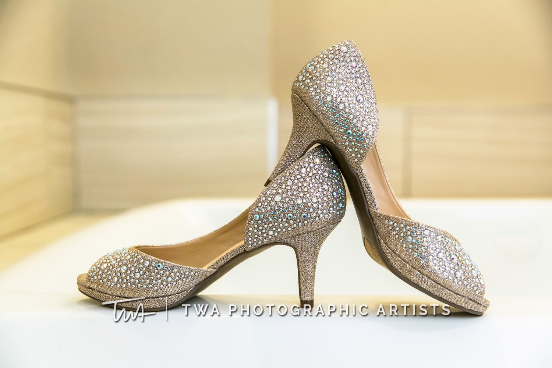 Chicago-Wedding-Photographer-TWA-Photographic-Artists-DiNolfo_s-Banquets_Traimas_Alebiosu_DR-002_79177_0005