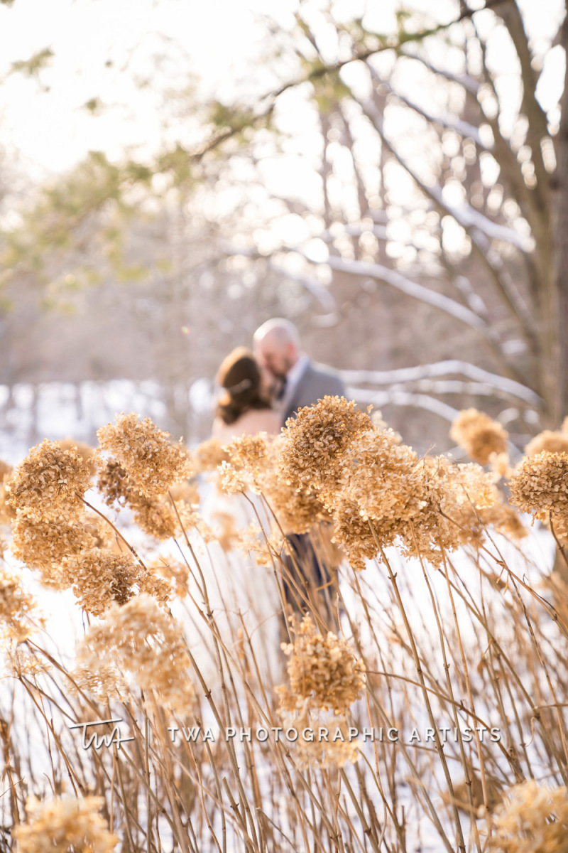 Chicago-Wedding-Photographer-TWA-Photographic-Artists-Morton-Arboretum_Bernal_Bober_HM_JC-1278