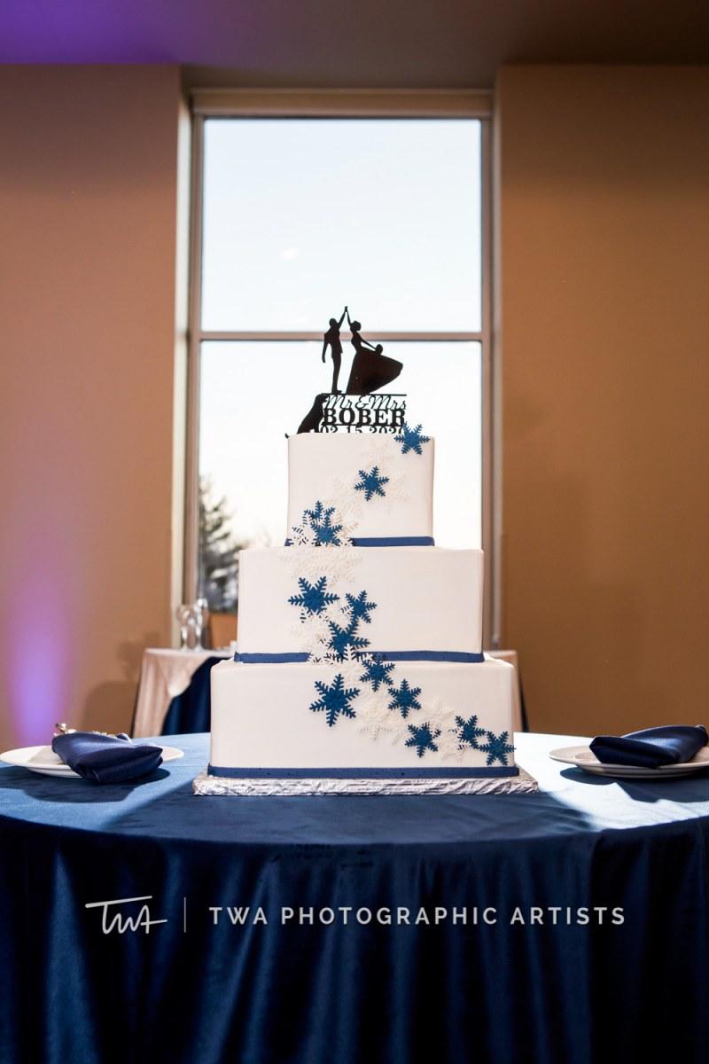 Chicago-Wedding-Photographer-TWA-Photographic-Artists-Morton-Arboretum_Bernal_Bober_HM_JC-0518