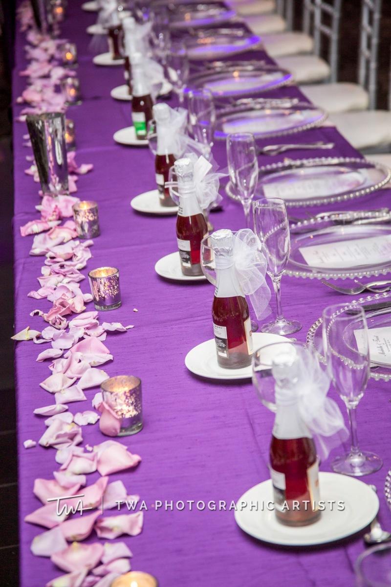 Chicago-Wedding-Photographer-TWA-Photographic-Artists-Empress-Banquets_Vlahoulis_Orr_ZZ_JK-050_1170