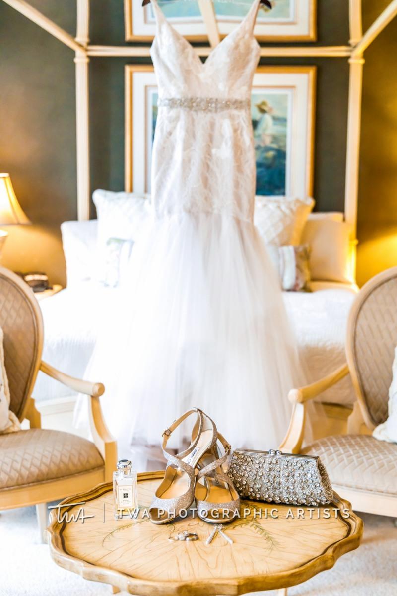 Chicago-Wedding-Photographer-TWA-Photographic-Artists-Elements_Lehman_Sbertoli_MC_DH-001-0004