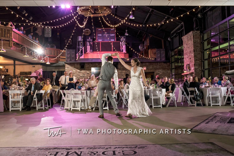 Chicago-Wedding-Photographer-TWA-Photographic-Artists-CD_Me_Plese_Parrish_ZZ-0716