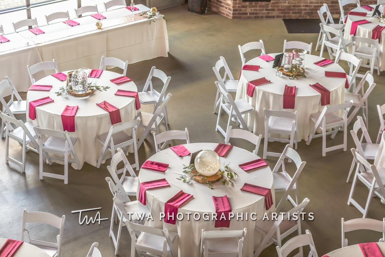Chicago-Wedding-Photographer-TWA-Photographic-Artists-CD_Me_Rutter_Campione_MiC_LB-0162
