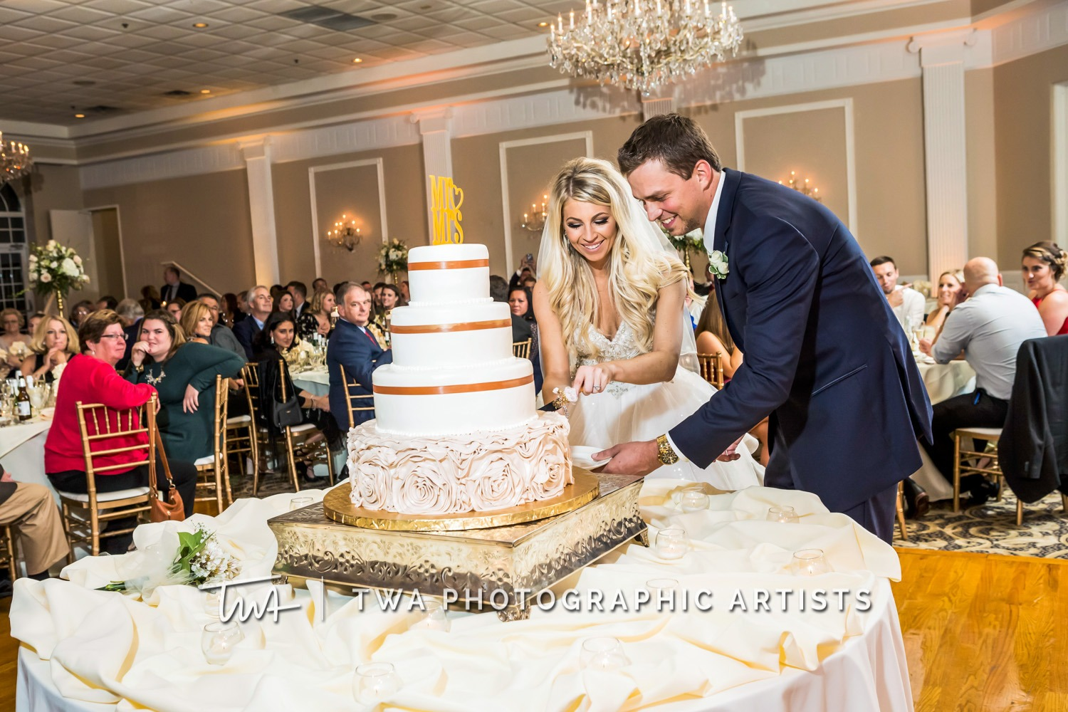 Chicago-Wedding-Photographer-TWA-Photographic-Artists-Abbington-Banquets_Annoreno_Baird_MiC_SG-0602