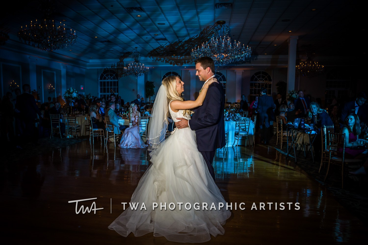 Chicago-Wedding-Photographer-TWA-Photographic-Artists-Abbington-Banquets_Annoreno_Baird_MiC_SG-1175_AP