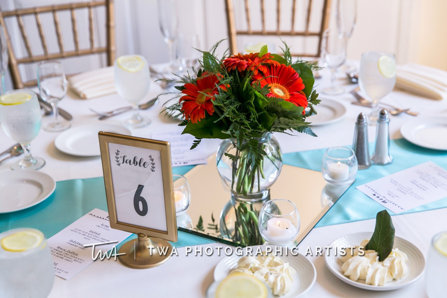 Chicago-Wedding-Photographer-TWA-Photographic-Artists-Abbington-Banquets_Gaela_Bowles_DR-0524