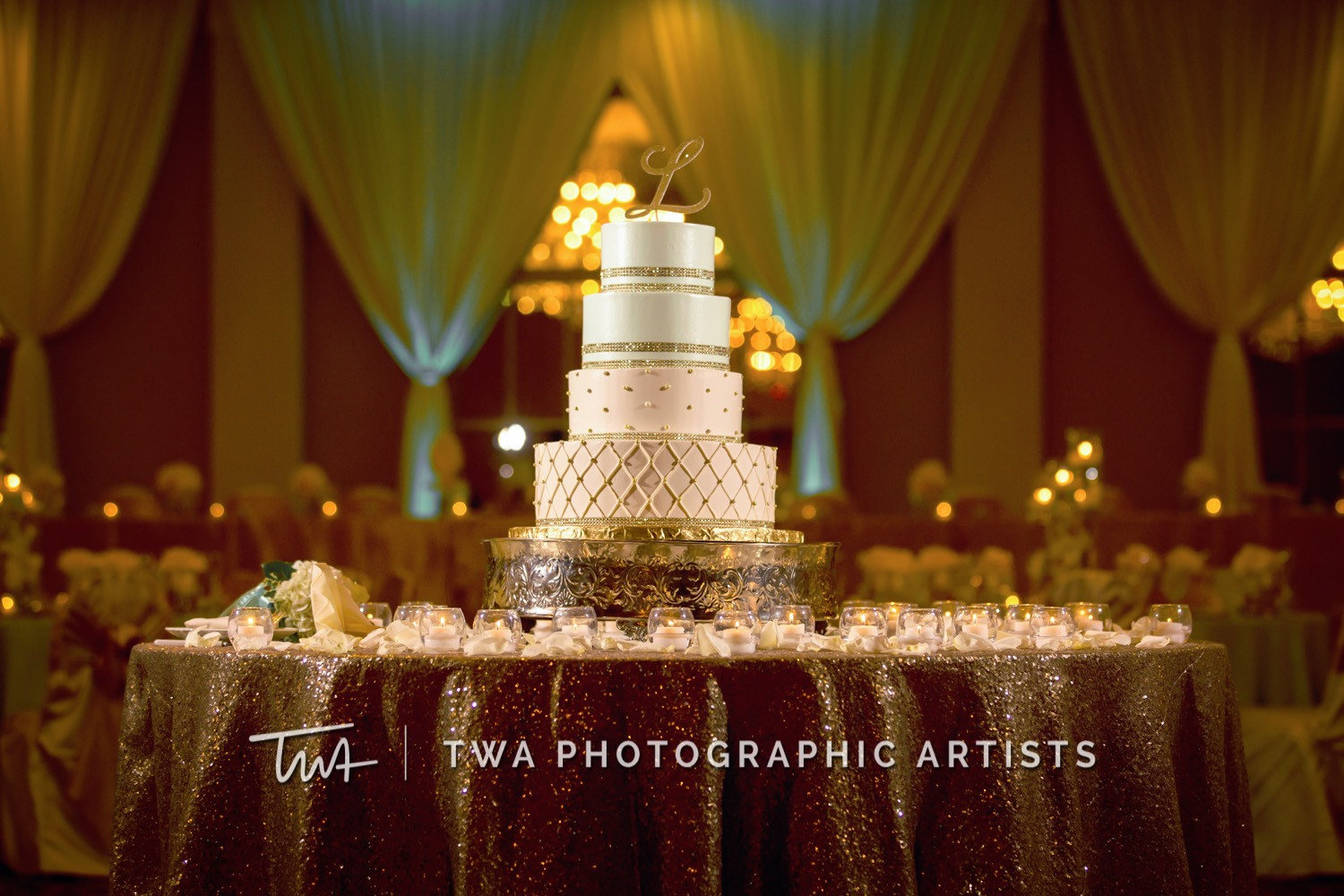 Chicago-Wedding-Photographer-TWA-Photographic-Artists-Abbington-Banquets_Maggi_Layman_JM_DR-0379