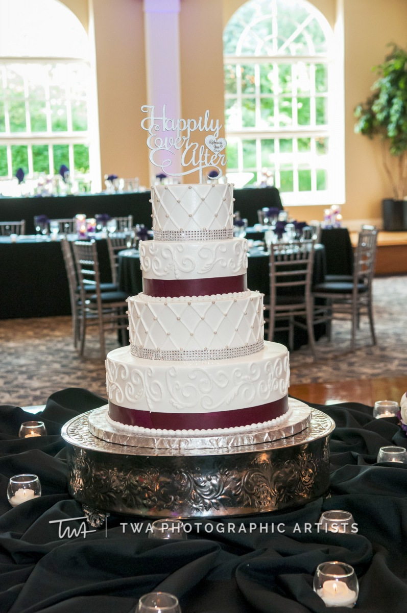 Chicago-Wedding-Photographer-TWA-Photographic-Artists-Abbington-Banquets_Shurhay_Oostdyk_JM_DH-0874
