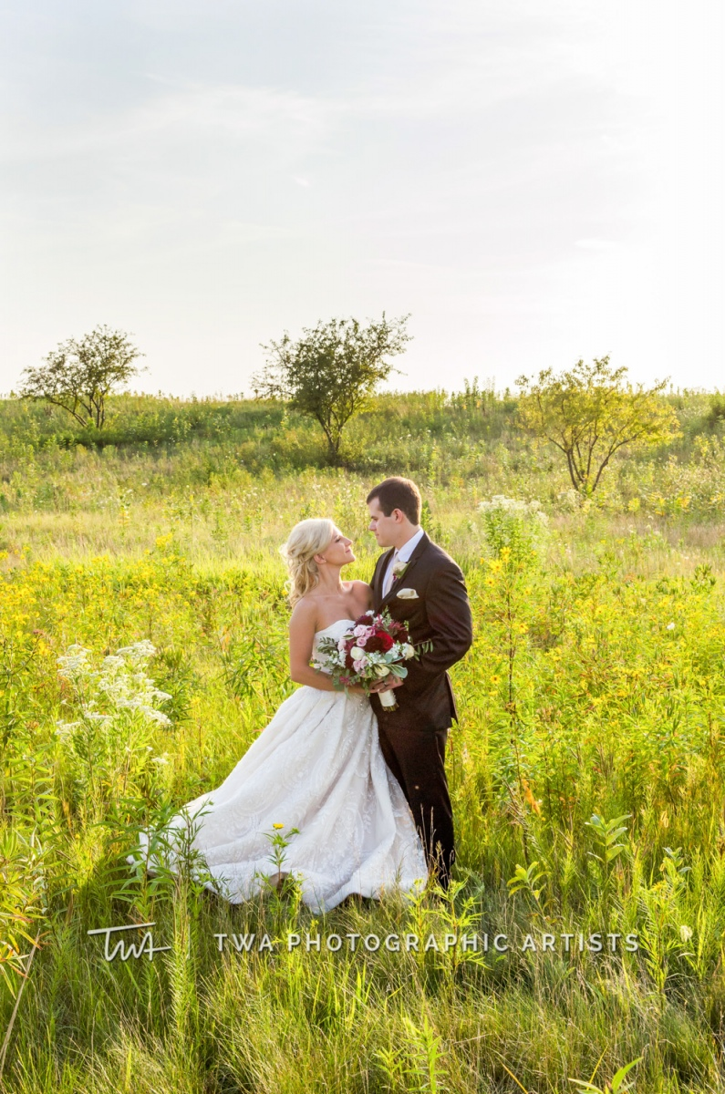 Chicago-Wedding-Photographer-TWA-Photographic-Artists-Bolingbrook-GC_Beechen_McKendry_NO_DO-0645