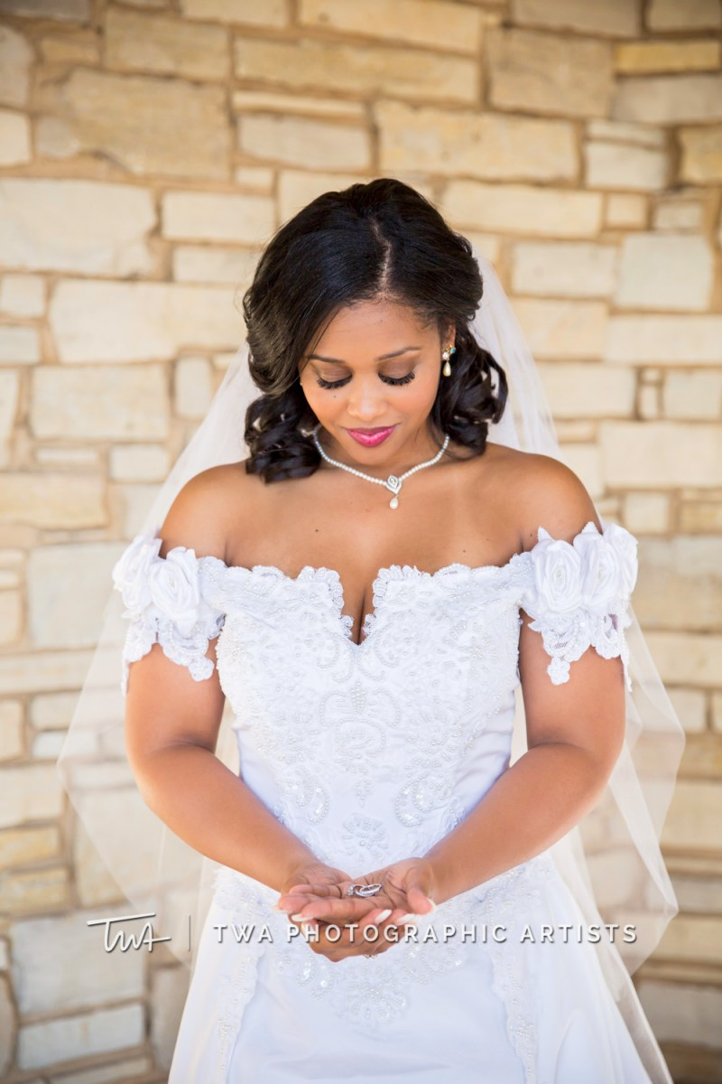Chicago-Wedding-Photographer-TWA-Photographic-Artists-Bolingbrook-GC_Craft_O_Neill_JP_DK-1158