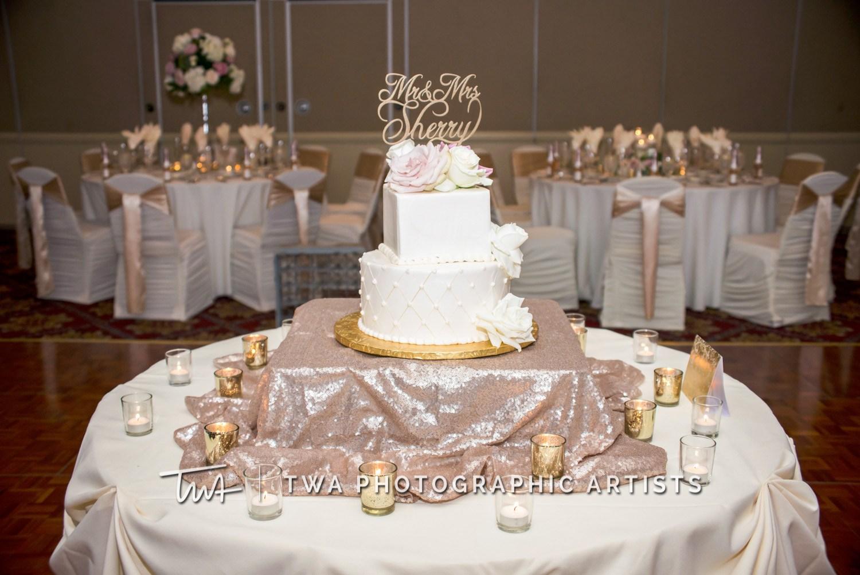 Chicago-Wedding-Photographer-TWA-Photographic-Artists-Bolingbrook-GC_Czajkowski_Sherry_ZZ_TL-1082