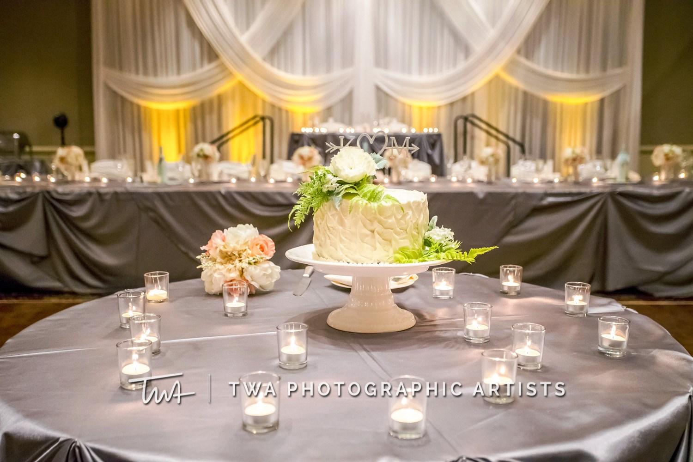 Chicago-Wedding-Photographer-TWA-Photographic-Artists-Bolingbrook-GC_Kerr_Meehan_MC_DR-0524