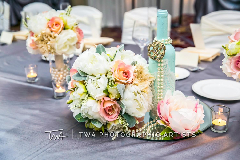 Chicago-Wedding-Photographer-TWA-Photographic-Artists-Bolingbrook-GC_Kerr_Meehan_MiC_DR-1096