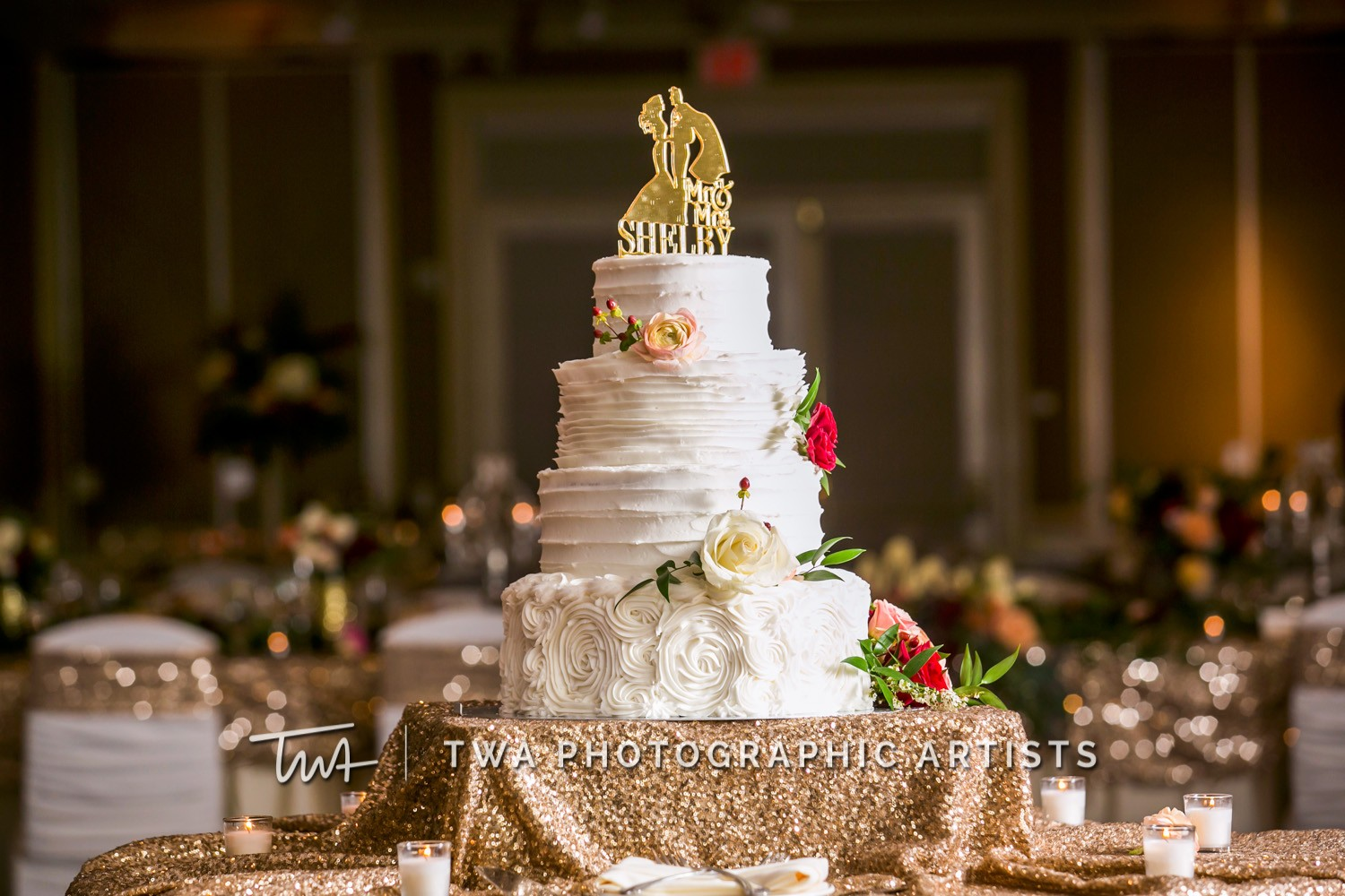 Chicago-Wedding-Photographer-TWA-Photographic-Artists-Bolingbrook-GC_Kuhn_Shelby_DR_DH-0554