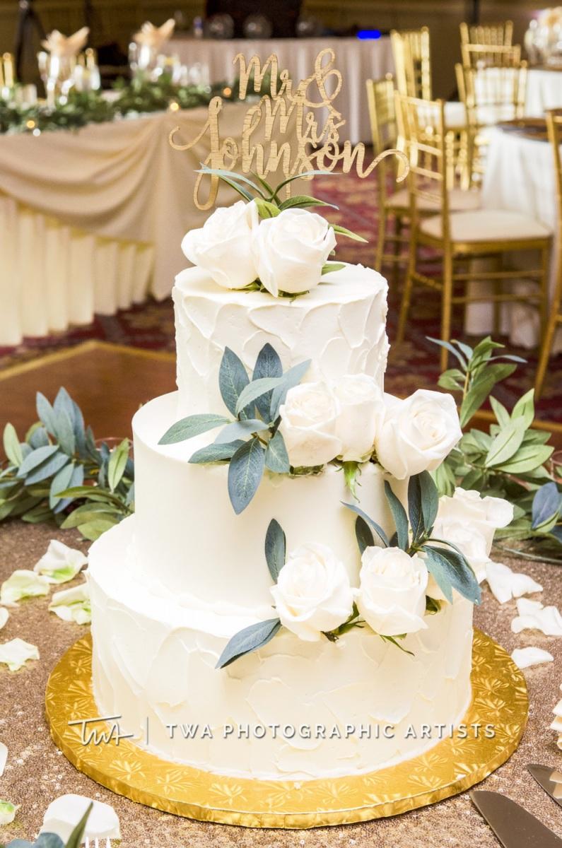 Chicago-Wedding-Photographer-TWA-Photographic-Artists-Bolingbrook-GC_Lebo_Johnson_NO_DR-0862