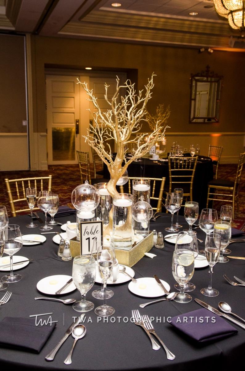 Chicago-Wedding-Photographer-TWA-Photographic-Artists-Bolingbrook-GC_Skiniotes_Vlahovic_NO_DR-0813