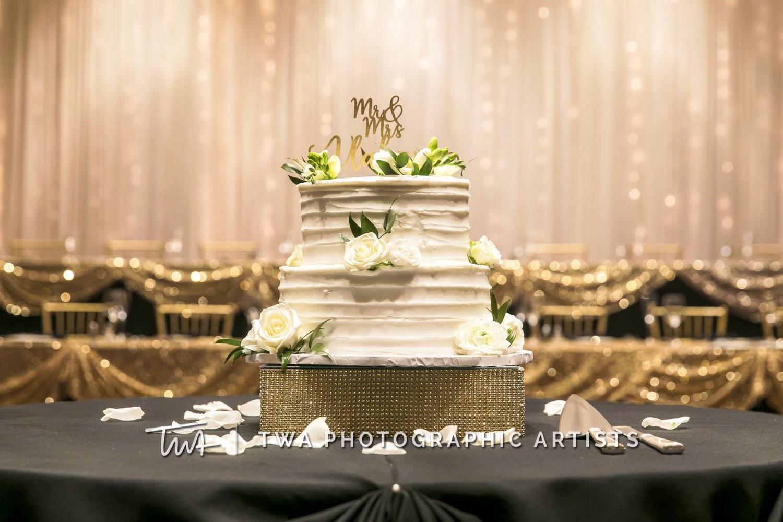 Chicago-Wedding-Photographer-TWA-Photographic-Artists-Bolingbrook-GC_Skiniotes_Vlahovic_NO_DR-1409