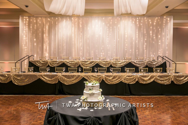 Chicago-Wedding-Photographer-TWA-Photographic-Artists-Bolingbrook-GC_Skiniotes_Vlahovic_NO_DR-1419
