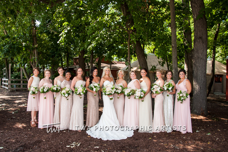 Chicago-Wedding-Photographer-TWA-Photographic-Artists-County-Line-Orchard_Cerf_Delay_JA_SG-0315