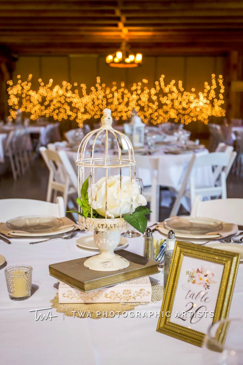 Chicago-Wedding-Photographer-TWA-Photographic-Artists-County-Line-Orchard_Cerf_Delay_JA_SG-0997