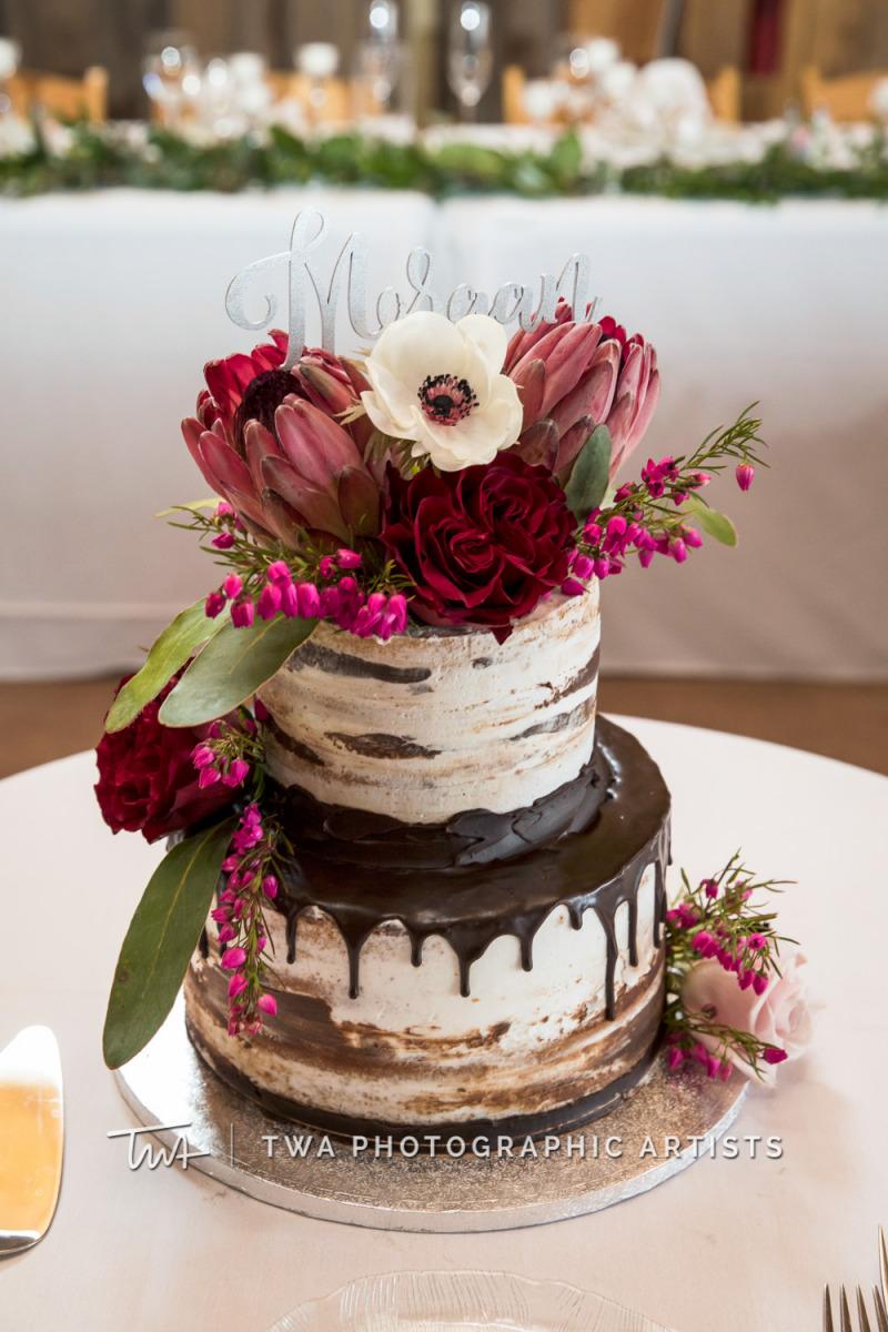 Chicago-Wedding-Photographer-TWA-Photographic-Artists-County-Line-Orchard_Allocco_Morgan_JA-0287
