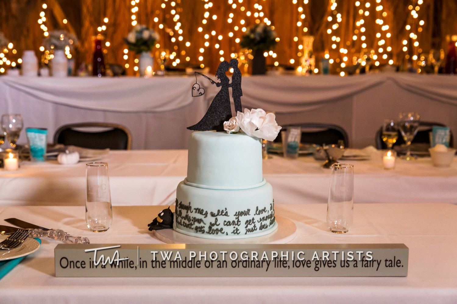 Chicago-Wedding-Photographer-TWA-Photographic-Artists-County-Line-Orchard_Bomba_Purcell_MiC_DR-0999
