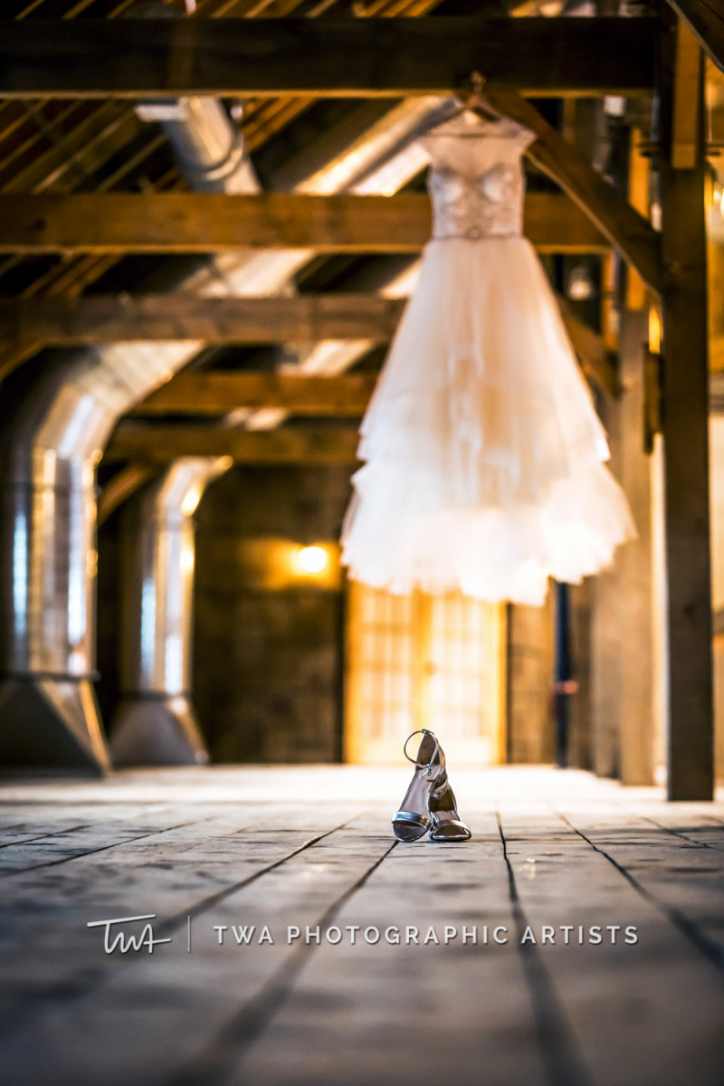 Chicago-Wedding-Photographer-TWA-Photographic-Artists-County-Line-Orchard_Kaczmanek_Gibeault_MiC_GP-0135