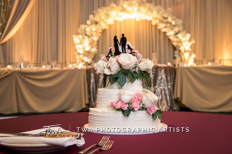 Chicago-Wedding-Photographer-TWA-Photographic-Artists-DiNolfo_s-Banquets_Pappas_Zoellner_WM-0971
