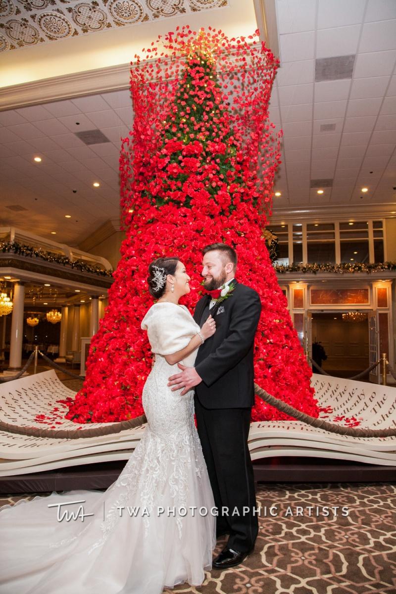 Chicago-Wedding-Photographer-TWA-Photographic-Artists-Drury-Lane_Ayala_Turrentine_MC_NS-1009