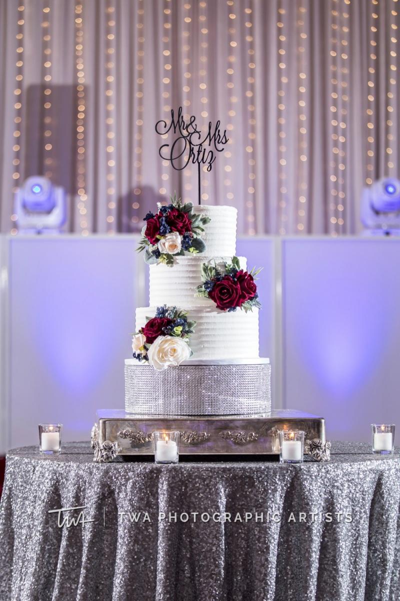 Chicago-Wedding-Photographer-TWA-Photographic-Artists-Stan-Mansion_Braun_Ismael_MC_SG-1093-1