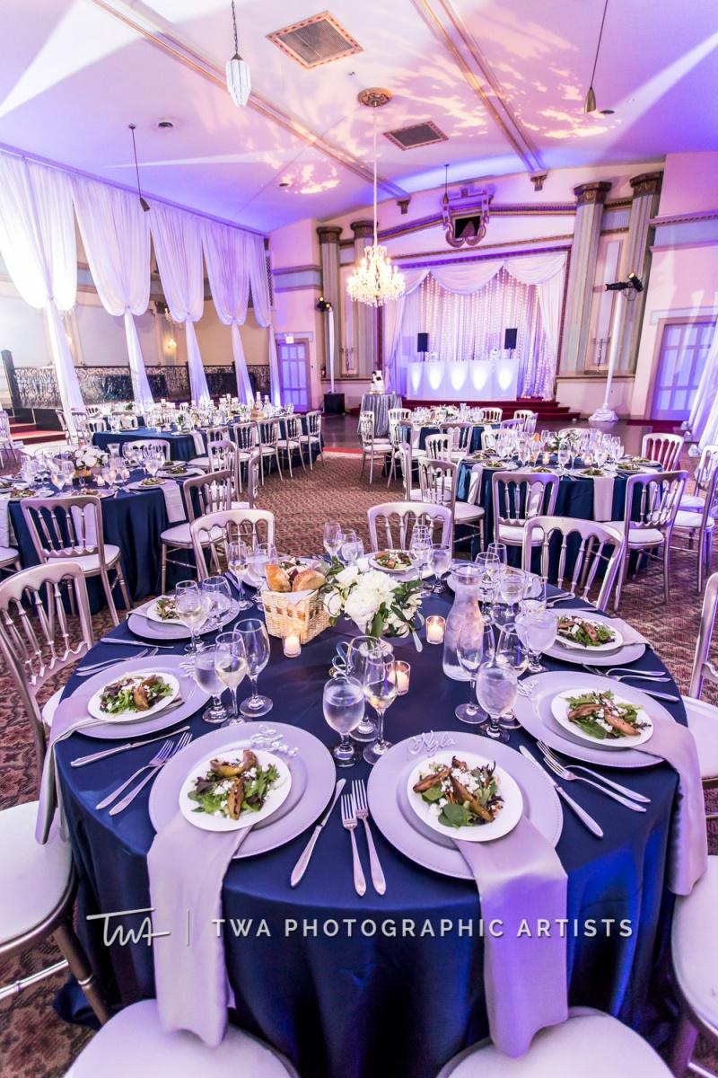 Chicago-Wedding-Photographer-TWA-Photographic-Artists-Stan-Mansion_Braun_Ismael_MC_SG-1100-1